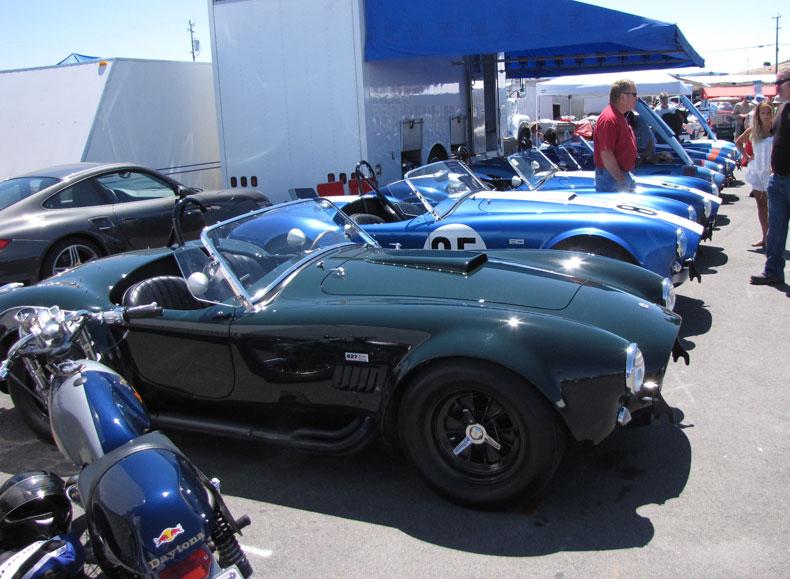 Cobra AC Tyre