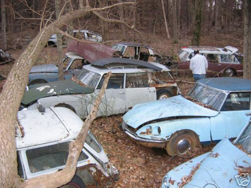 Citroen DS graveyard